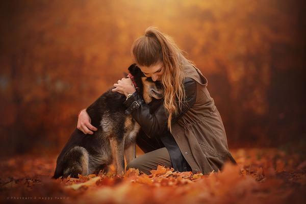 秋が来た!紅葉と遊ぶ犬画像 (9)