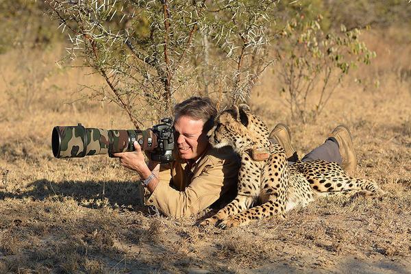 カメラに興味津々な動物の画像 (1)