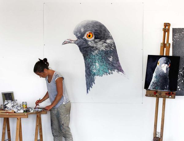 美しい鳩の油絵!卵から孵化して家族となった鳩 (1)