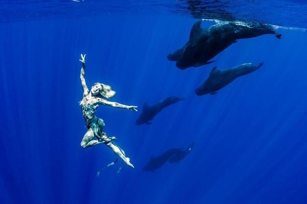 ザトウクジラとモデルのダイバーが一緒に海中を泳ぐ