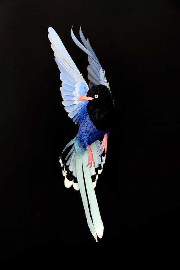 カラフル!リアル!鳥や蝶をモチーフにした紙の彫刻作品 (15)