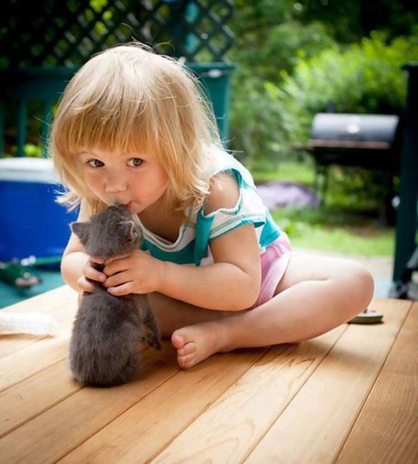 ペットは大切な家族!犬や猫と人間の子供の画像 (30)