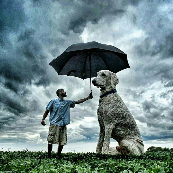 犬を大きくする!そんな夢をフォトショップの画像加工 (2)