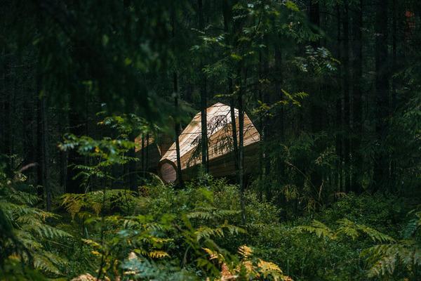 癒し効果がきっと一杯!森の音を聴く超大きなメガホン (6)