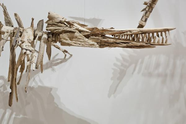 流木彫刻!絶滅した淡水イルカ、ヨウスコウカワイルカを描く (10)