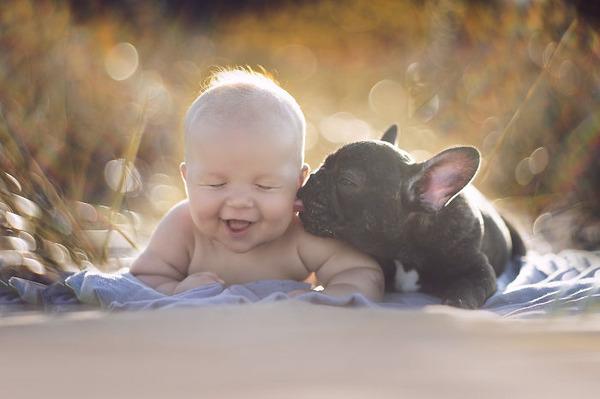 ペットは大切な家族!犬や猫と人間の子供の画像 (85)