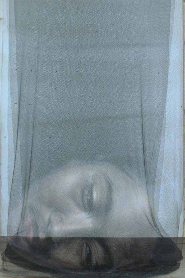 幽霊のように浮かぶ!薄手の生地に描かれた肖像画 (3)