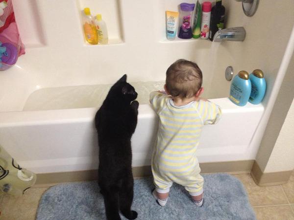 ペットは大切な家族!犬や猫と人間の子供の画像 (11)