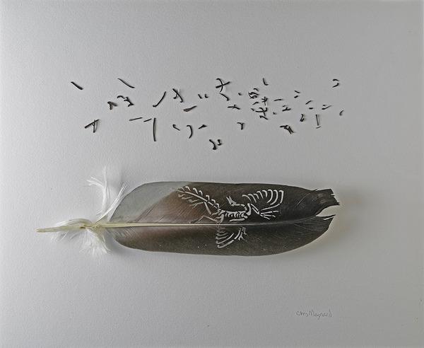 鳥の羽から切り取られた鳥類や動物のモチーフ (4)