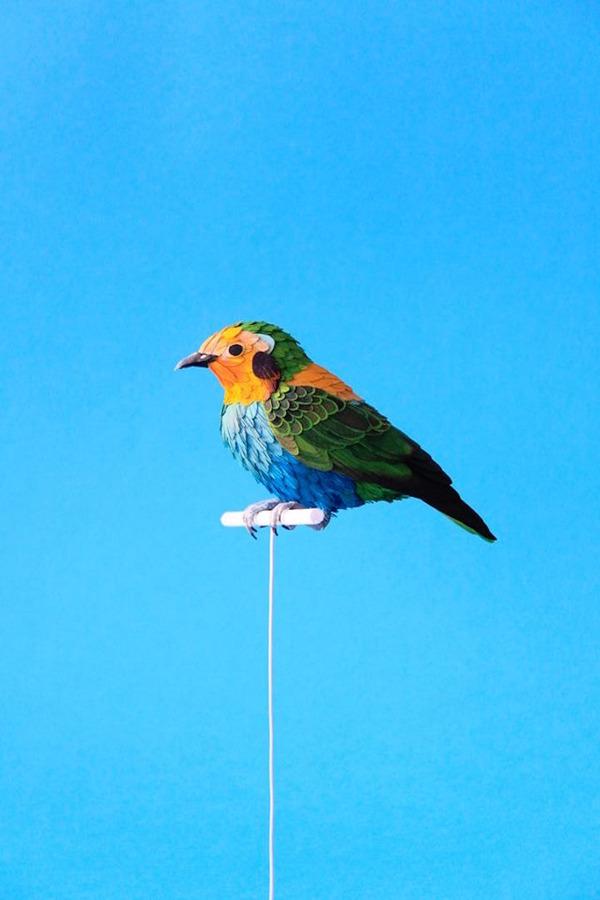 カラフル!リアル!鳥や蝶をモチーフにした紙の彫刻作品 (16)