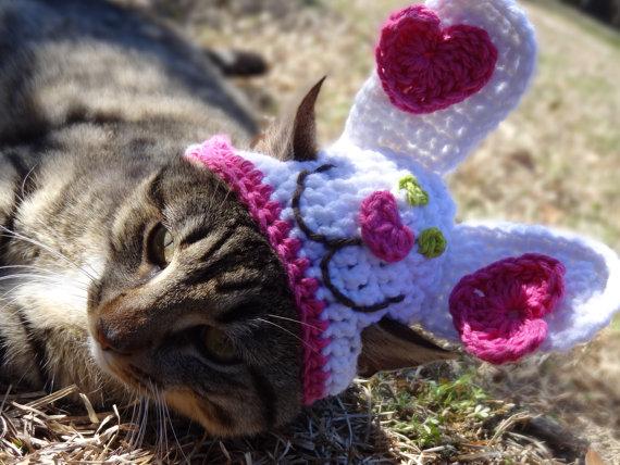 かわいさアップ?猫にぴったりなペット用ニット帽_ (4)