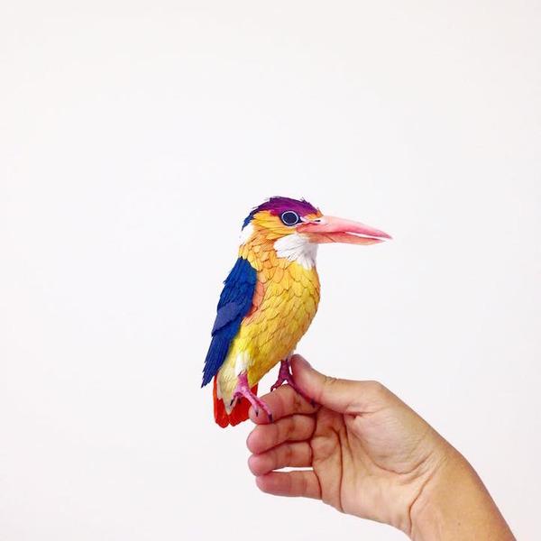 カラフル!リアル!鳥や蝶をモチーフにした紙の彫刻作品 (5)