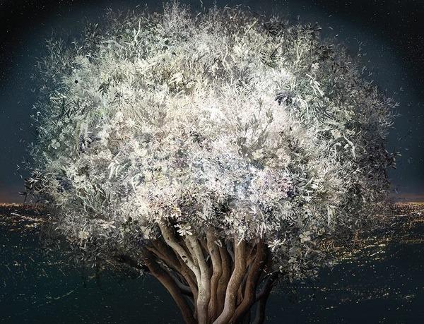 木々や花々を組み合わせて作られたコラージュ画像 (2)