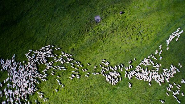 『Dronestagram 2016』!ドローンでスゴイ空撮写真を競うよー (3)