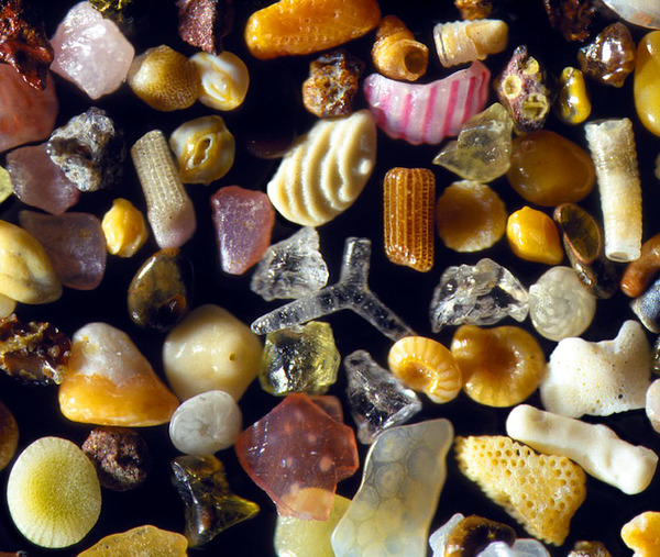 顕微鏡で見た美しいハワイの砂 3