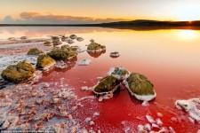 Koyashskoye 美しい紅に染まる塩湖。ピンク色の絶景