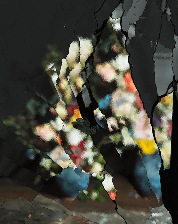 壊れた鏡に反射させた花 4