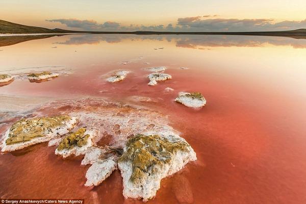 紅く染まる塩湖 Koyashskoye 12