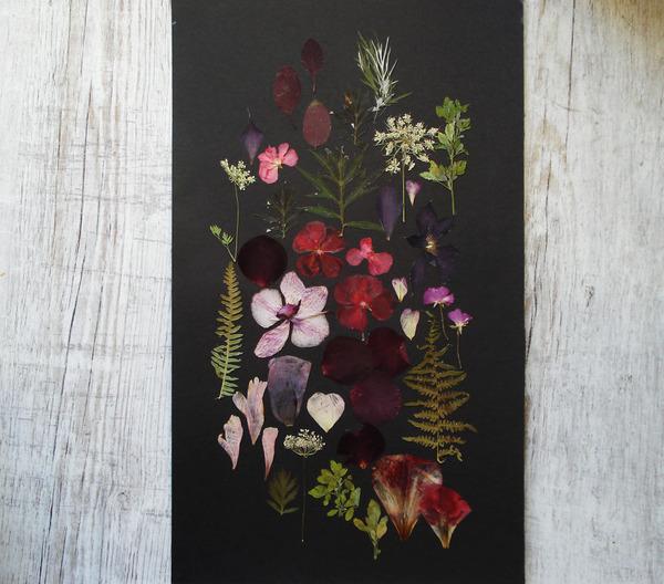 葉や花で自然を描く!植物を素材にした押し花の絵 (11)