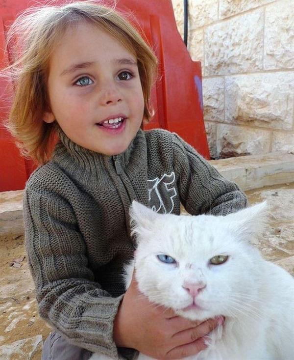 ペットは大切な家族!犬や猫と人間の子供の画像 (68)