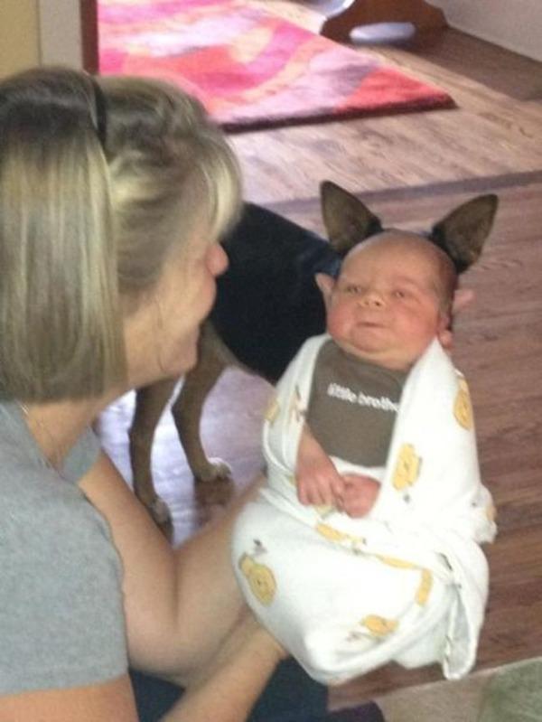 赤ちゃんに耳が映えた