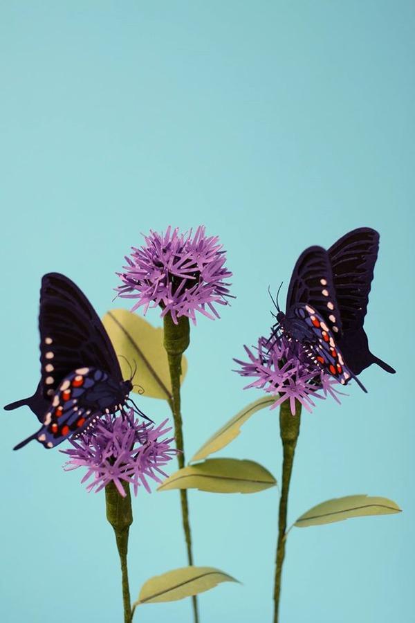 カラフル!リアル!鳥や蝶をモチーフにした紙の彫刻作品 (8)