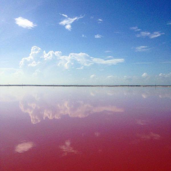 メキシコの塩湖が美しいピンクでミラクルファンシーだよー (10)