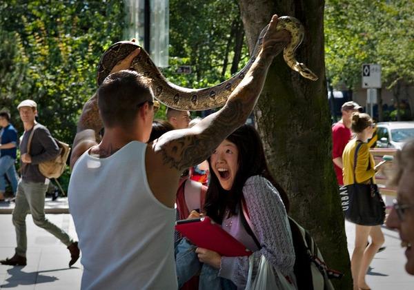 珍しいペット特集 ヘビ,カナダ