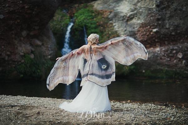 蝶の羽根模様のスカーフデザイン (3)
