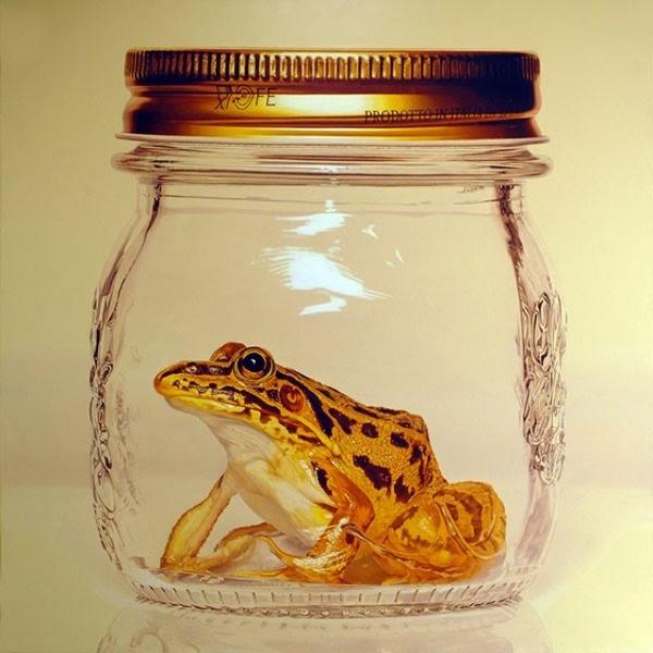 写真みたいに超リアルなカエルの絵画