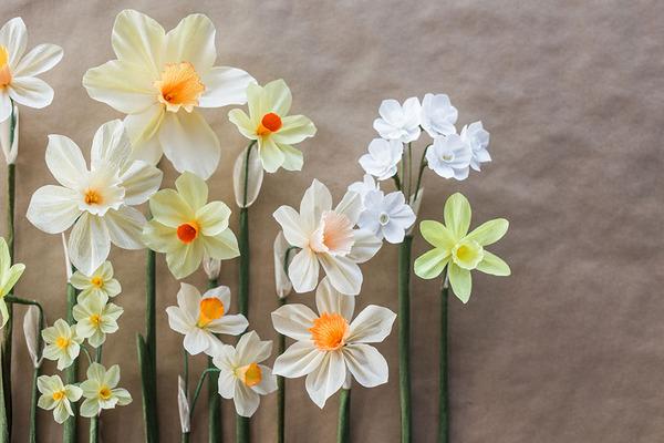 生き生きしてる!本物みたいな紙の花 (1)