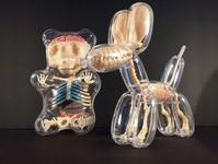骨や内臓まで丸見え!解剖学の動物標本のようなスケルトンの玩具