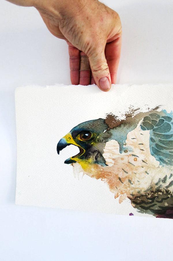 フクロウやワシなどの鳥類を描いたカラフルな水彩画 (5)