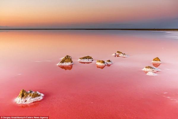 紅く染まる塩湖 Koyashskoye 7