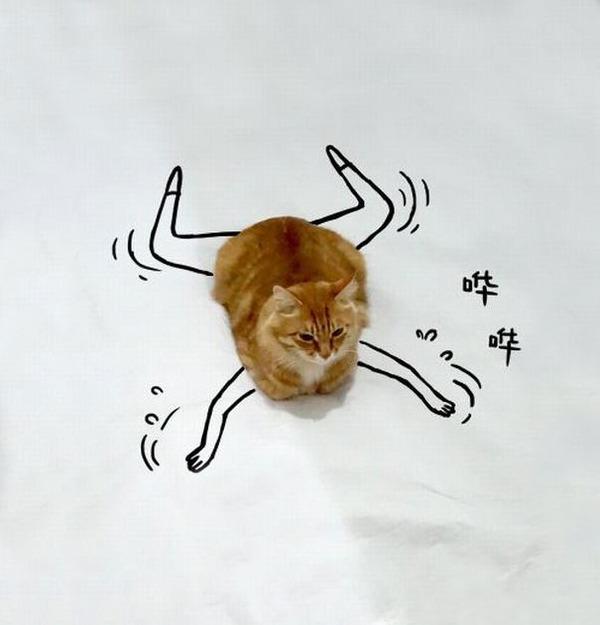 才能の無駄遣い?香箱座りの猫の画像にみんなで落書き! (7)