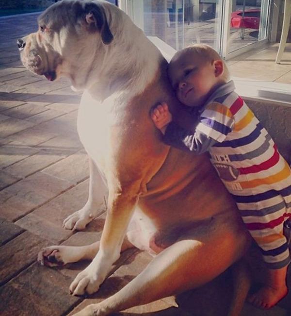 ペットは大切な家族!犬や猫と人間の子供の画像 (66)