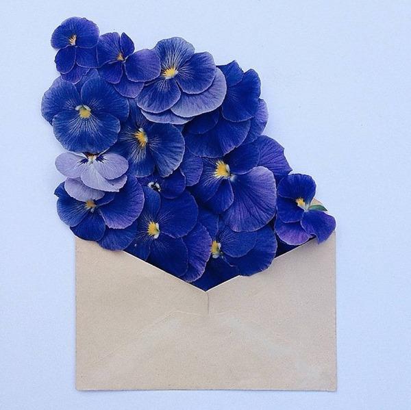 クラフト封筒に入れられた花束 (6)