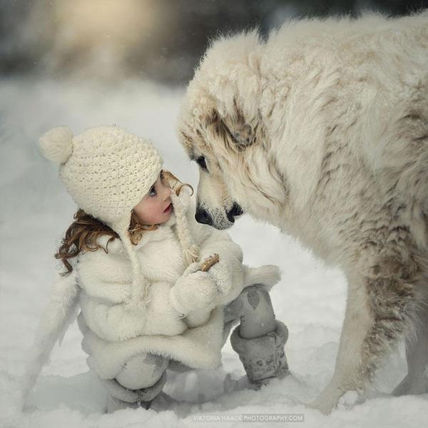 ペットは大切な家族!犬や猫と人間の子供の画像 (91)