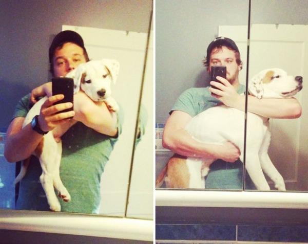 大きくなるわんこ!成長する愛犬のビフォーアフター画像! (3)