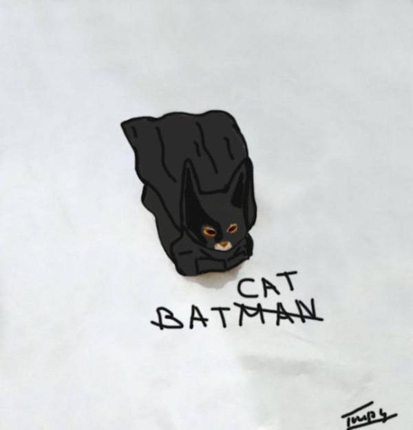 才能の無駄遣い?香箱座りの猫の画像にみんなで落書き! (15)