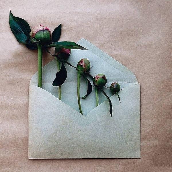 クラフト封筒に入れられた花束 (8)