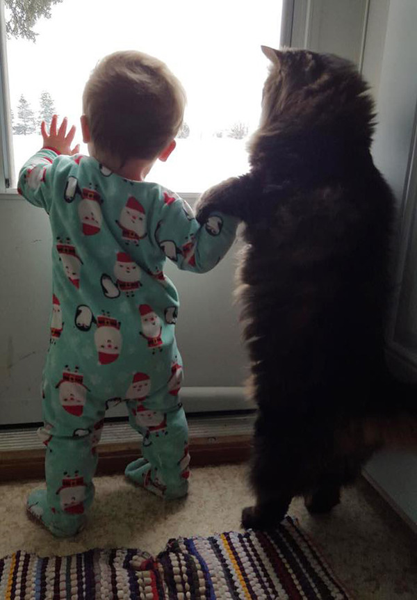 ペットは大切な家族!犬や猫と人間の子供の画像 (61)