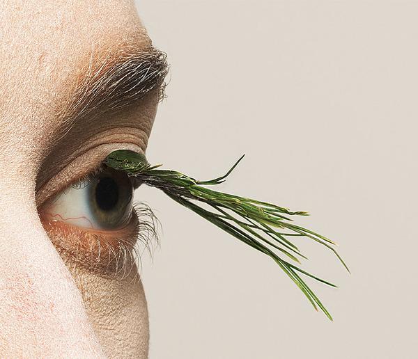100%自然素材!植物から作られた『ナチュラルつけまつげ』 (2)