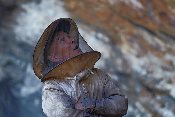 巨大な蜂の巣とのバトル!ネパールの伝統的な蜂蜜ハンター (8)