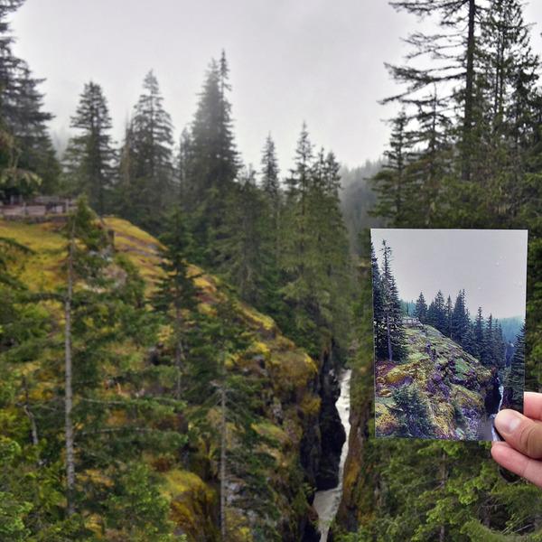 レーニア山国立公園3