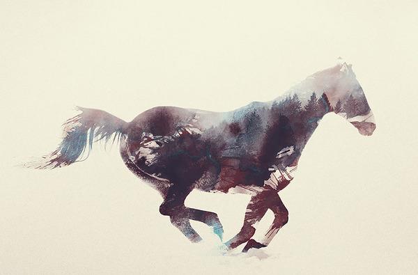 ウマの二重露光写真byアンドレアス・リー