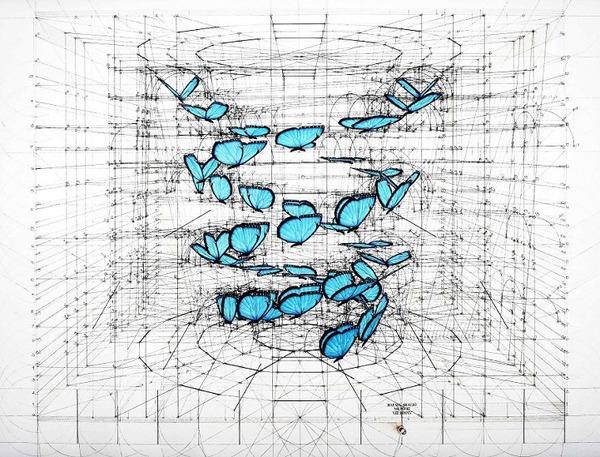 黄金比で描かれた手描きイラスト集!蝶や貝殻など (10)