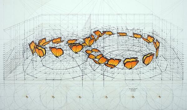 黄金比で描かれた手描きイラスト集!蝶や貝殻など (11)
