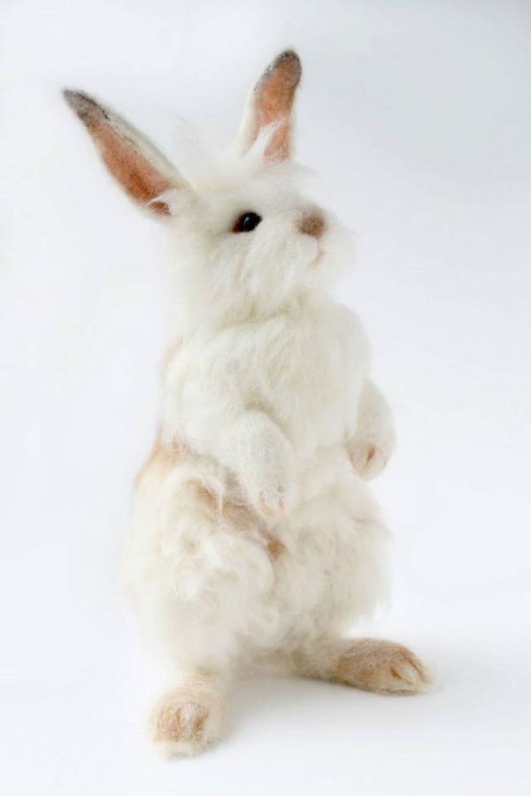 ウサギのぬいぐるみ2