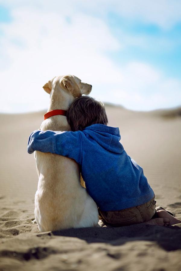 ペットは大切な家族!犬や猫と人間の子供の画像 (55)
